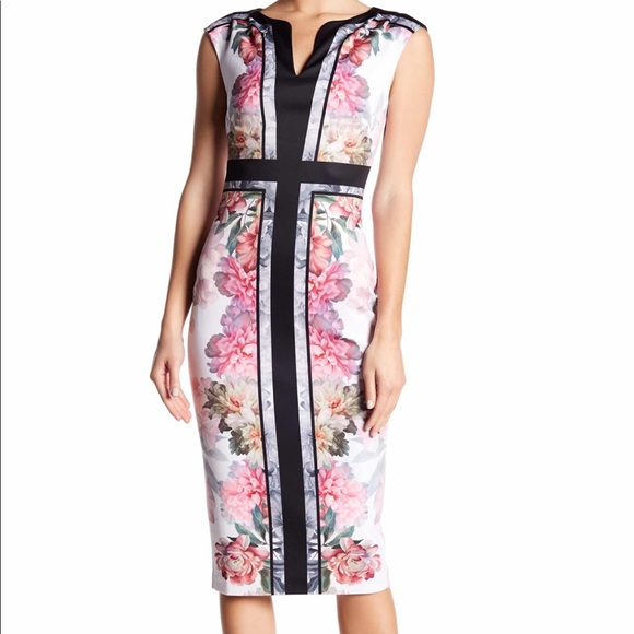Ted Baker London Dresses & Skirts - Ted Baker Painted Posie Sheath Dress Sz 4 (10) NWT
